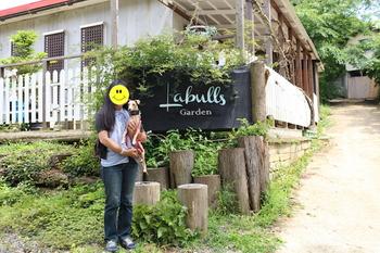 labulls150613-0.JPG